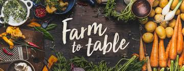Farm to Table at Just Vino
